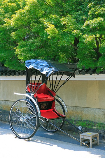 Kyoto,summer #kyoto #japan