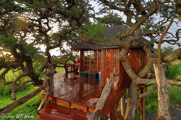 Kameeldoring Treehouse, Mokala National Park