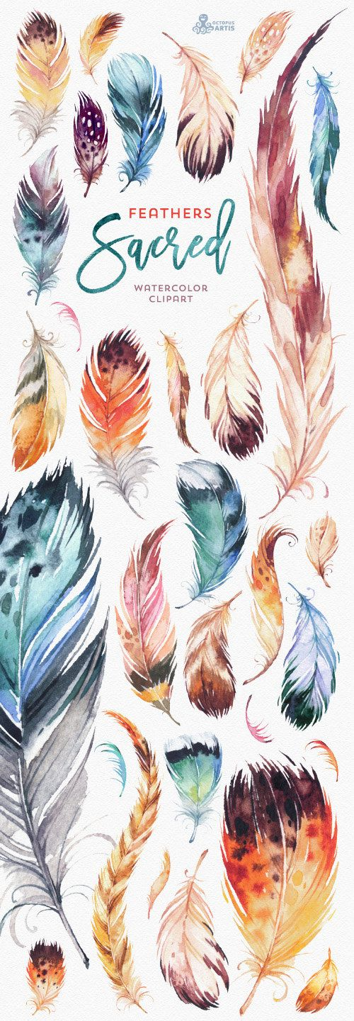 Sacred Feathers. Watercolour Clipart. Tribal gypsy by OctopusArtis