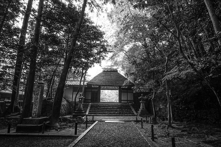 https://flic.kr/p/Ufaawy | Honen-in. [Preliminary Edit] | Honen-in Temple, Kyoto, Japan, April 2017.  Preliminary Edit Lightroom IOS (iPhone 7 plus).   Very rainy day in Kyoto, but on the plus side there were less tourists to compete with!