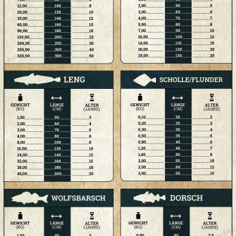 Längen-, Gewichts- und Altersumrechner für Meeresfische