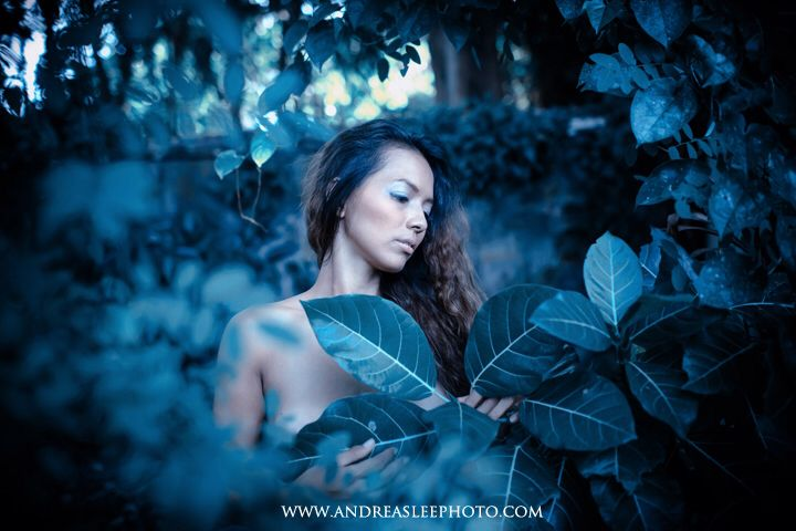 www.andreasleephoto.com