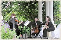 Tampa Florida Wedding Musicians, Tampa Bay String Quartets, String Ensembles for Wedding Receptions, Ceremony Music, Tampa, St Petersburg, Clearwater, Florida String Quartets, Musicians for Private Receptions