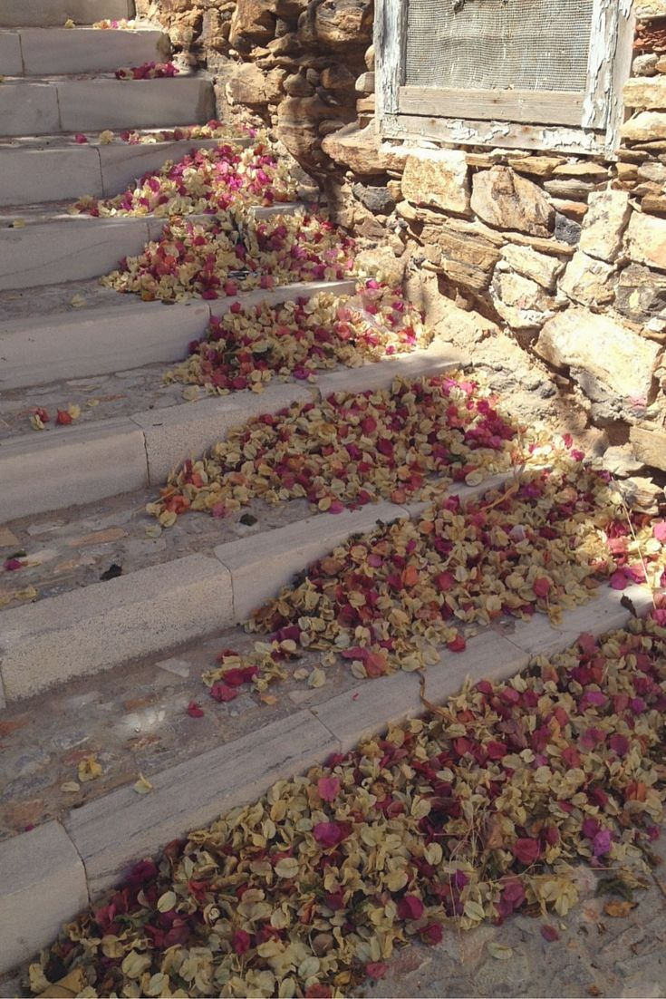Bougainvillea flower petals naturally collecting on the steps of Syros in the Cyclades Islands of Greece.  Such a perfect scene.