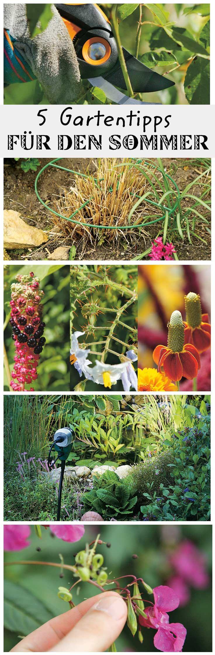 die 25 besten bilder zu gartentipps auf pinterest | schlagzeug, Gartengerate ideen