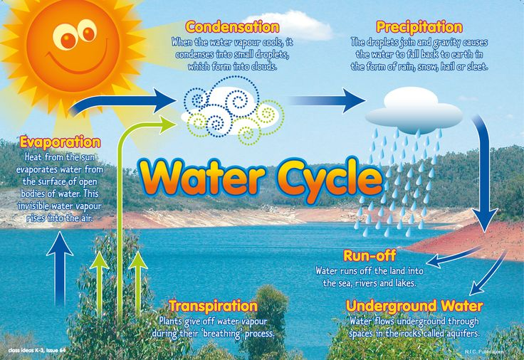 The water cycle free classroom poster from RIC Publications