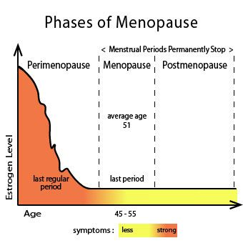 Menopause Age, Early Peri/Post Symptoms (Weight Gain ...