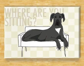 Great Dane Art Print Where Are You Sitting Black Great