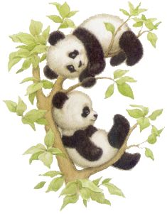Baby bears for jungle room. One would be a panda and one a brown bear.