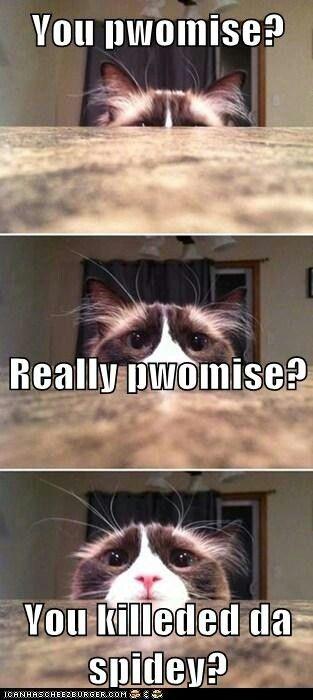 AWWWWWWW I'm with ya kitty I hate them too...