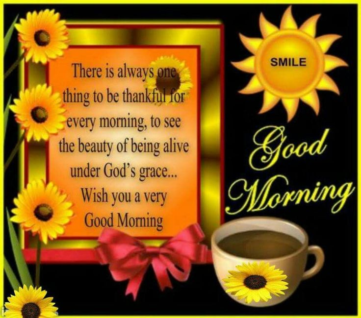 233 best cardsgood morning images on pinterest words beautiful good morning m4hsunfo