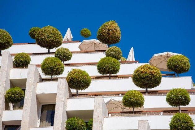 Dünyanın Dört Bir Yanından Büyüleyici Çatı Bahçeleri : NeoTempo