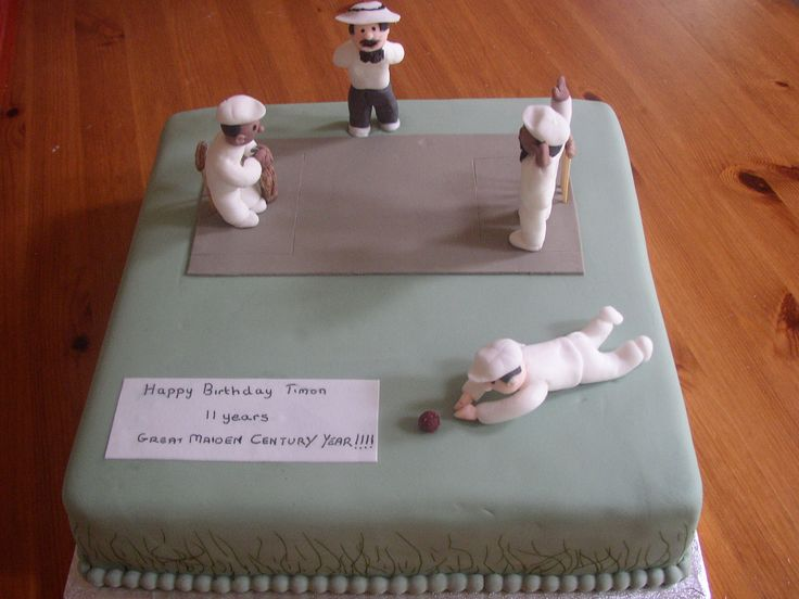 cricket pitch bowler umpire and bat birthday cake
