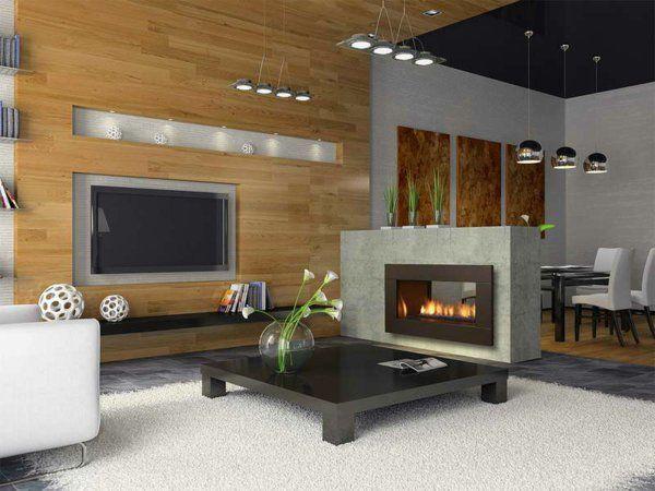 cheminée contemporaine, foyer en verre, salle de séjour et salle à manger