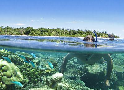 MALOLO ISLAND RESORT, MAMANUCA ISLANDS - FIJI Check Out More http://goo.gl/fb/JLkycB #Malolo #Island #Resort #Mamanuca #Islands #Fiji #places #placestovisit #resorts