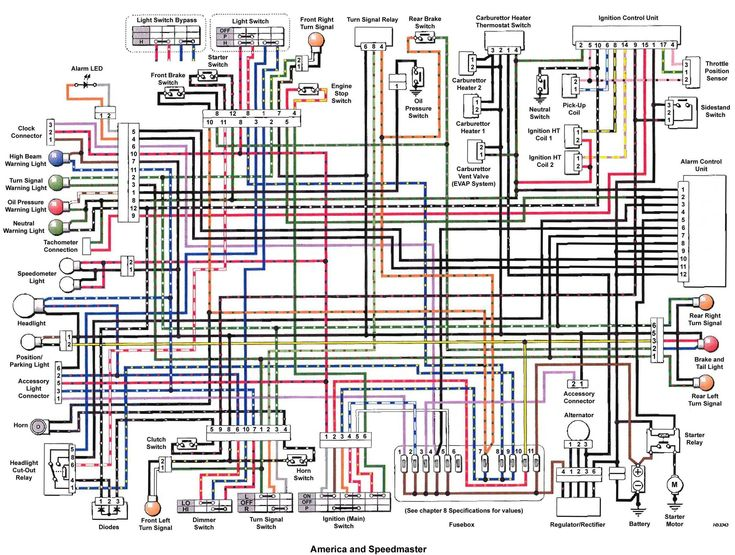 2000 Speed Triple Wiring Diagram Wiring Diagram Centre