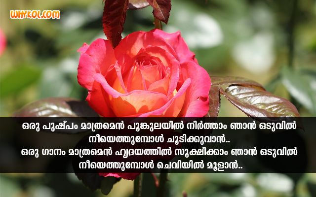 Love Songs Scraps Images Quotes In Malayalam Love Song Lyrics Quotes True Love Quotes Image Quotes