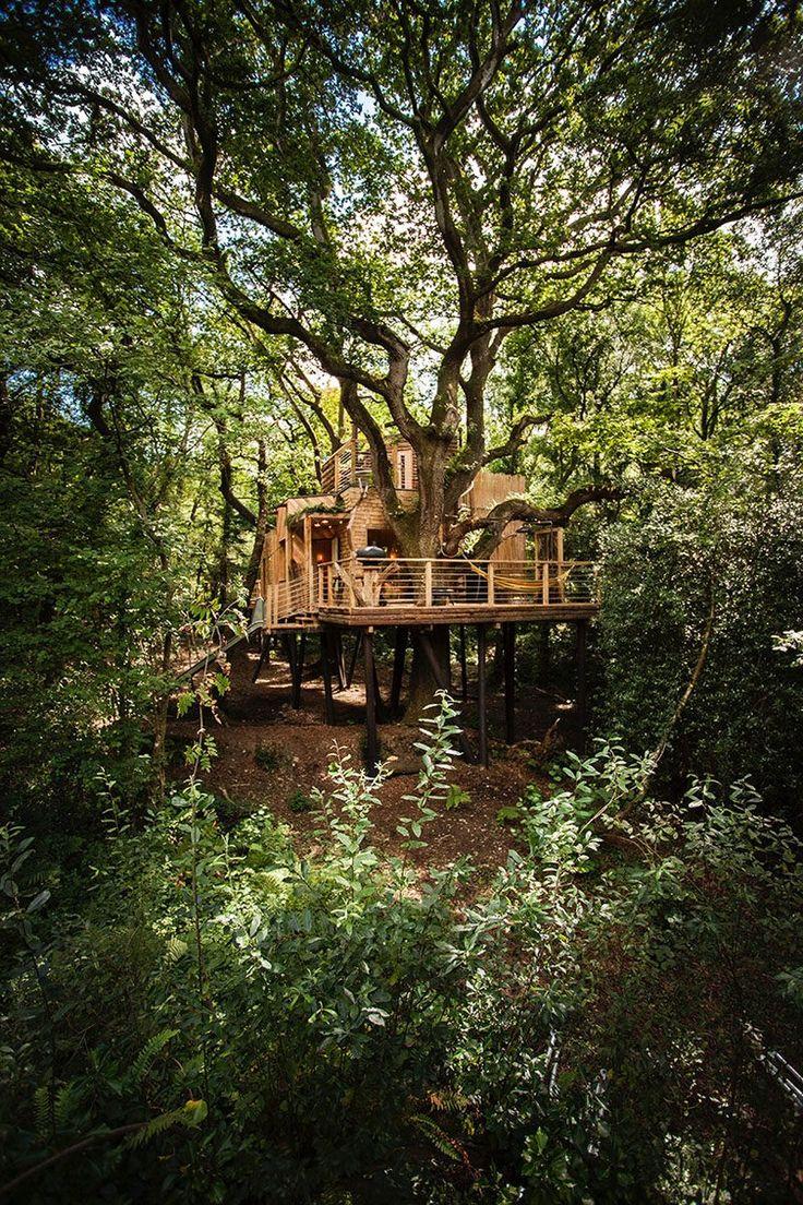 Befindet sich in West Dorset, England, dieser zweistöckigen modernen Baumhaus herum, umgeben von alten Eichen angeordnet ist und enthält viele einen kreisförmigen Innenraum mit modernem Luxus.