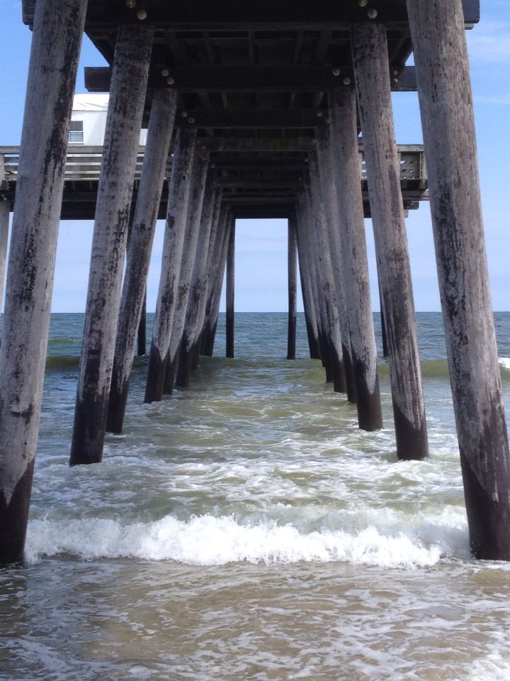 Under the fishing pier in ocean city nj june 2015 new for Jersey shore fishing