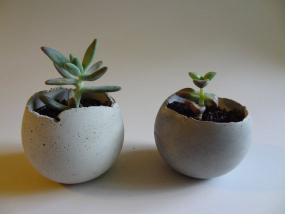 Small Concrete Bowl Planter. Painted. Succulent Planter. Jewelry Storage. Indoor Planter, Urban Industrial. Rustic Cottage. Cement.