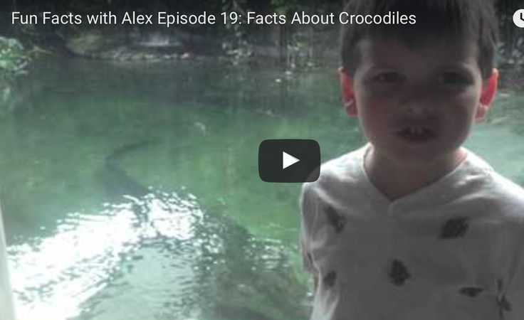 FFWA Episode 19:  Facts About Crocodiles   http://www.funfactswithalex.com/episode-19-facts-about-crocodiles/