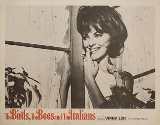 Posteritati: BIRDS, THE BEES AND THE ITALIANS, THE (Signore e signori) 1980 U.S. Scene Card (11x14)