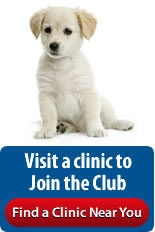 Puppy Packages vaccines