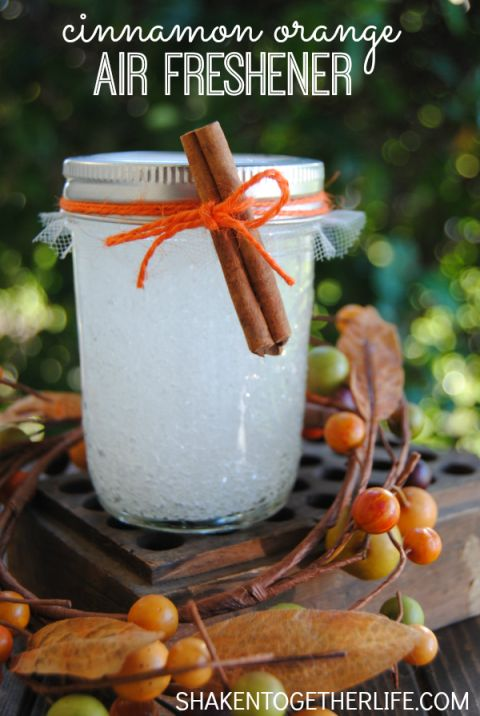 Infuse your home with the scents of autumns with this DIY air freshener, filled with cinnamon and orange essential oils. Get the tutorial at Shaken Together.