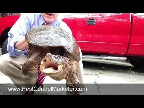 Pest Control Marketing - Don't get chomped by snapping turtle customers,...