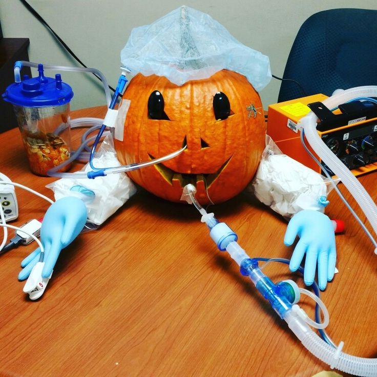 Best pumpkin decorating contest images on pinterest
