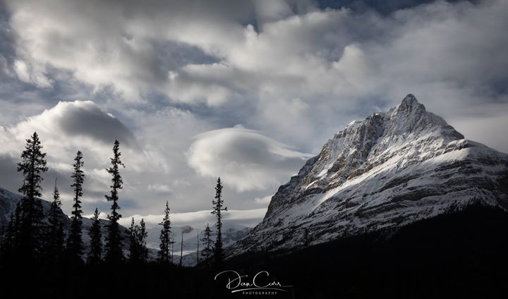 View from the Icefield Parkway in Banff National Park.