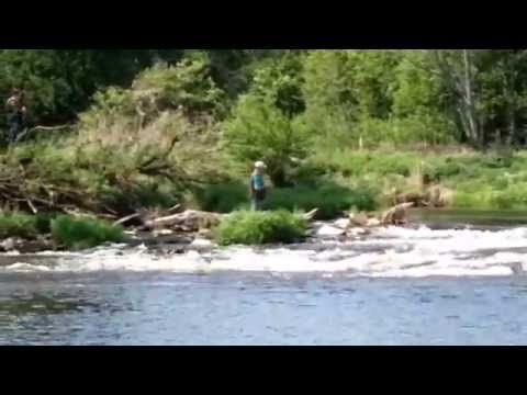 ▶ Žemyn Dubysos upe - Kelionė baidarėmis Dubysos upe 2014 - 05 17-18 d.d. - YouTube