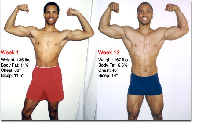 Amazing Program Training To Gain Muscle Fast, Check Out ...