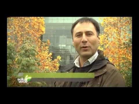 Capítulo 02,programa de televisión que muestra los mejores casos de sostenibilidad, conducido por Pedro Mancilla.