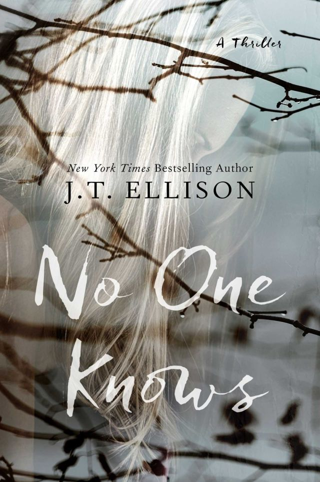 15 books like The Girl on the Train, including No One Knows by J.T. Ellison.