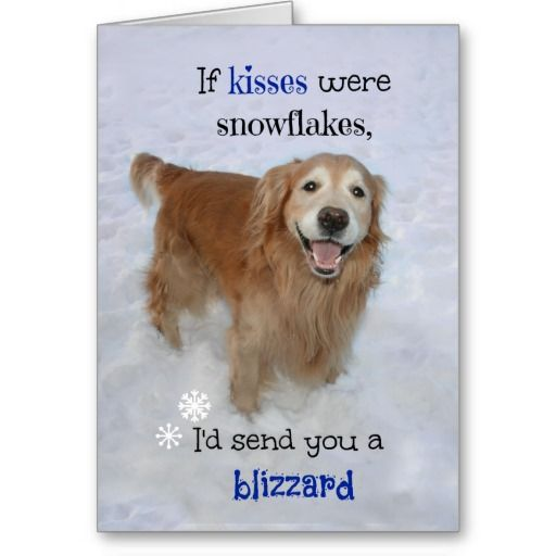 128 best images about Golden Retriever Greeting Cards Postcards – Valentines Day Text Cards