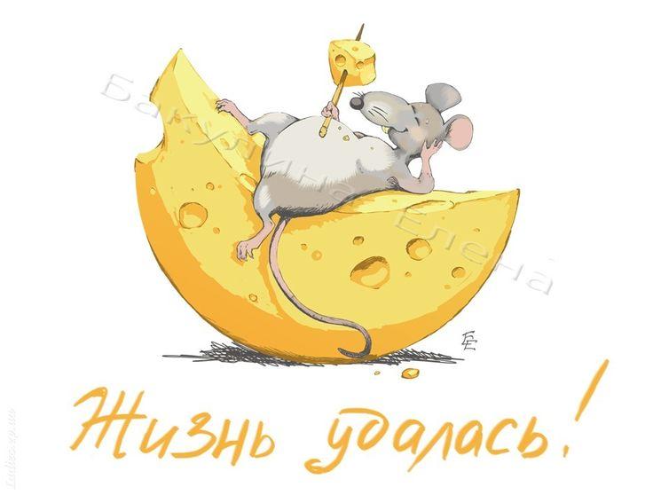 мышка с сыром рисунок - Поиск в Google