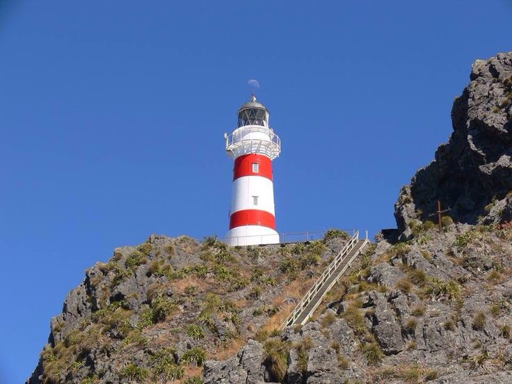 Historic cape palliser lighthouse has a new coat of paint by Rosemary
