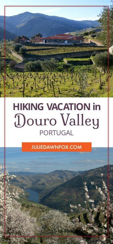Walking the Douro wine region in Portugal on a village to village walking holiday. Breathtaking views of vineyards and landscapes, opportunities to visit wineries and discover local culture, food and wine. Click through to read more about a Hiking Vacation in the Douro Valley, Portugal. | Julie Dawn Fox in Portugal #hiking #outdoor #selfguided #DouroValley #Portugal #walkingholiday