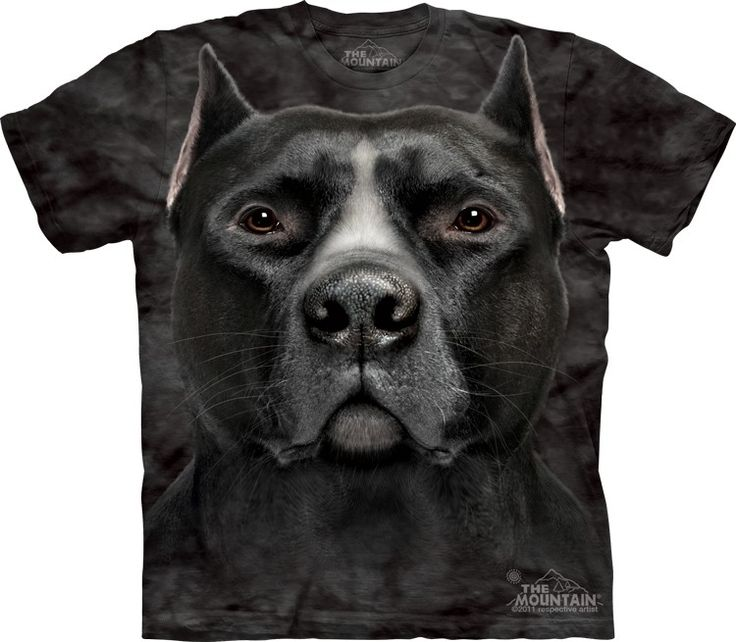 Big face pit bull t-shirt by the mountain - Click image to see hundreds of different animal t-shirts #themountaintees