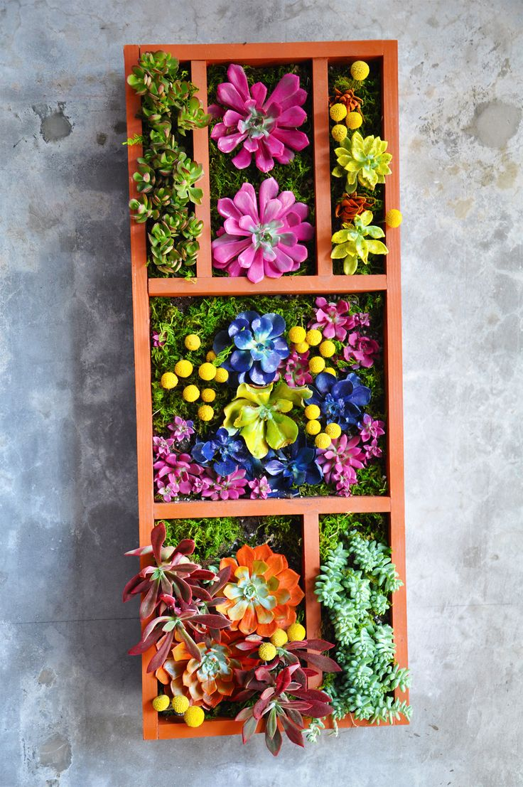 best terrarium images on pinterest garden terrarium
