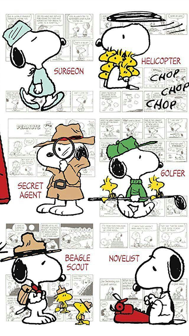 Jersey Snoopy Panel Comic