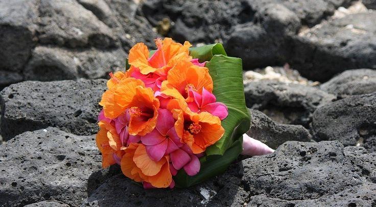 orange-hibiscus and pink frangipaniHibiscus Wedding, Bridesmaid Flower, Ideas, Hibiscus Bouquets, Wedding Bouquets, Beach Wedding Flower, Orange Hibiscus, Bali Wedding, Bouquets Flower