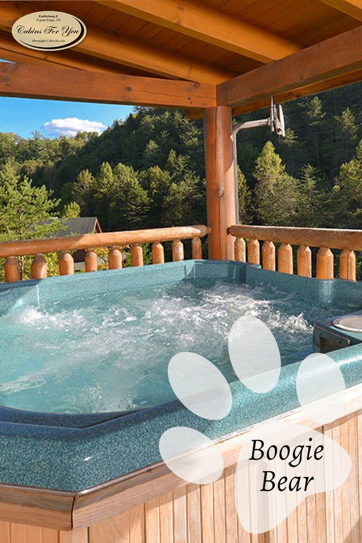 forge pool gatlinburg apartments rental in pigeon tn info with pet friendly cabins hesstonspeedway