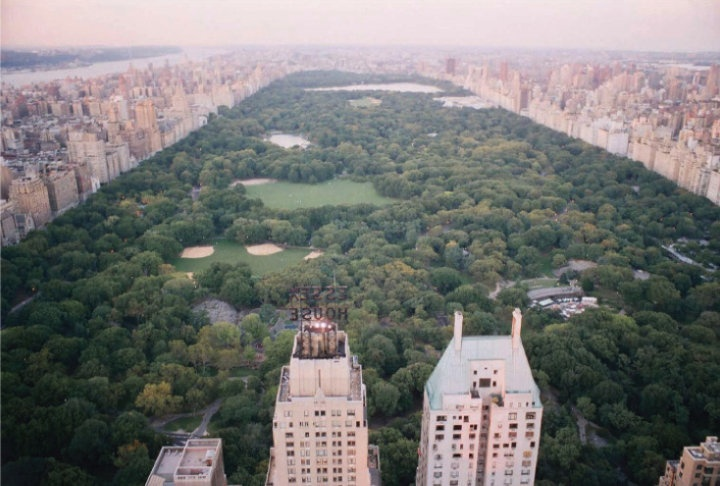 Central ParkNew York Cities, Favorite Places, Country Girls, Nyc Nyc, Central Parks, Birds Eye View, The Cities, Manhattan New York, Travel