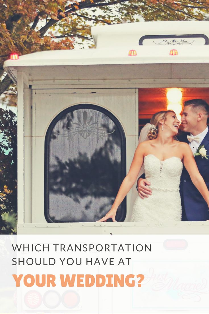 Which Transportation Should You Have at Your