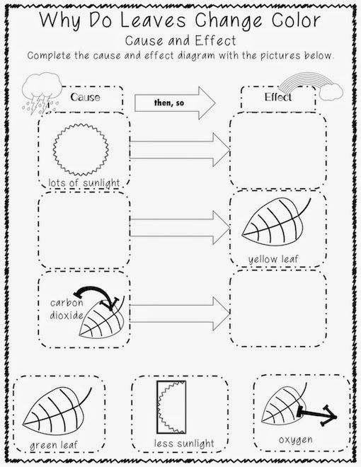 A E F E Bf A Science Inquiry Kinder Science as well Leaf Indentification Part Cards Fb additionally B D A C A C also B Db Ec D B A A Aebf Mde Youth Services also C Bd Ce Ed B A A E D. on leaf identification cards free printable