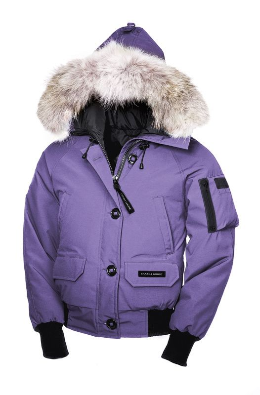 17 best Canada Goose Chilliwack Bomber images on Pinterest | Canada goose  fashion, Canada goose jackets and Cheap canada goose