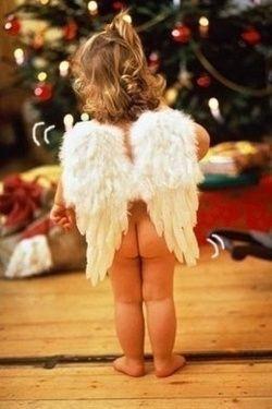 christmas angel such a cute card idea..soooo cute.Christmas Cards, Christmas Pictures, Holiday Cards, Christmas Baby, Angels Baby, Christmas Angels, Angels Wings, Christmas Trees, Christmas Photos