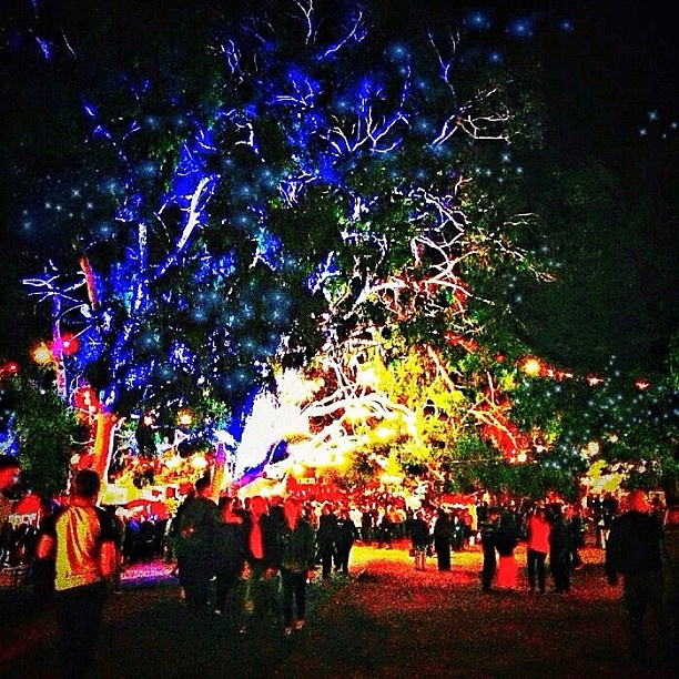 @misadelaides photo: Adelaide Fringe Festival - night view - Garden of Unearthly Delights